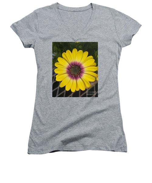 Fascinating Yellow Flower Women's V-Neck T-Shirt