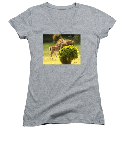 Women's V-Neck featuring the photograph Fawn by Angel Cher