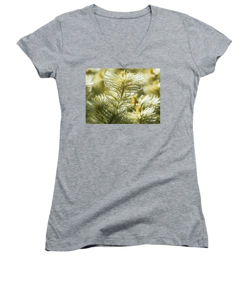 Featherheads Women's V-Neck T-Shirt