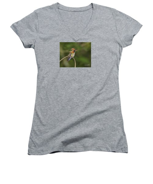 Feisty Little Fellow..  Women's V-Neck