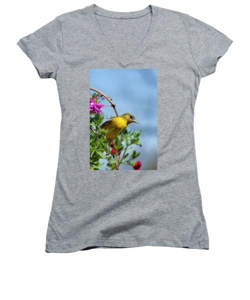 Female Baltimore Oriole In A Flower Basket Women's V-Neck T-Shirt