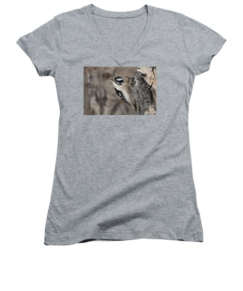 Female Downey Woodpecker Women's V-Neck (Athletic Fit)