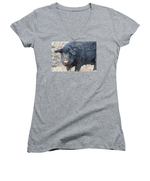 Women's V-Neck T-Shirt (Junior Cut) featuring the photograph Female Hog by James BO Insogna