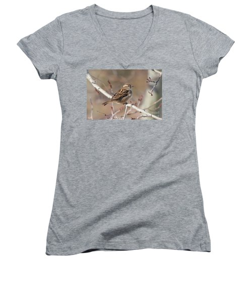 Female House Sparrow Women's V-Neck (Athletic Fit)