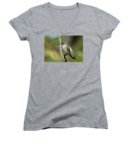 Female Ruby-throated Hummingbird On Branch Women's V-Neck