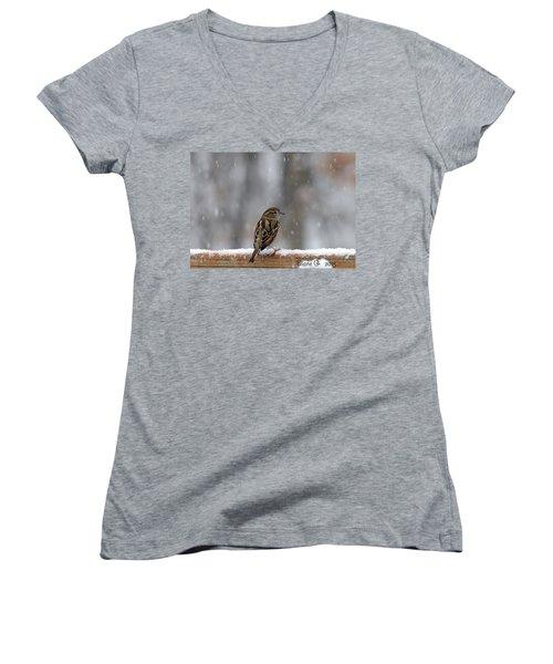 Female Sparrow In Snow Women's V-Neck T-Shirt