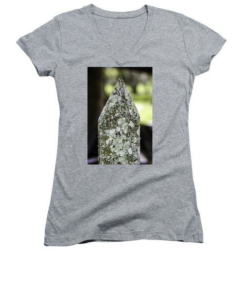 Fence With Moss Women's V-Neck