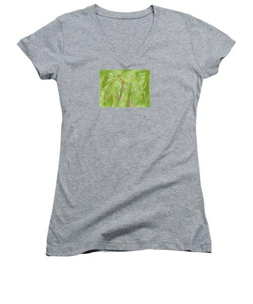 Few Figures Women's V-Neck T-Shirt