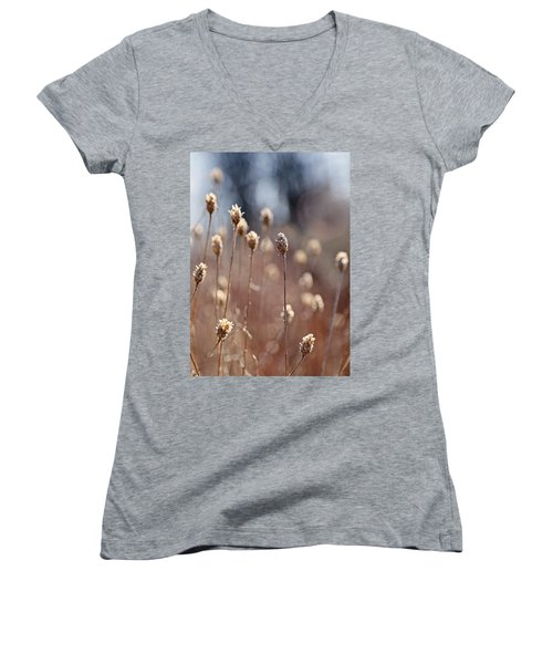 Field Of Dried Flowers In Earth Tones Women's V-Neck (Athletic Fit)