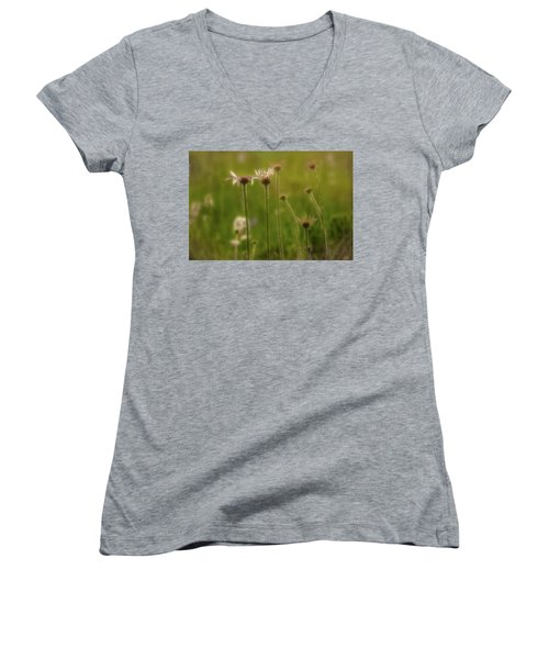 Field Of Flowers 2 Women's V-Neck (Athletic Fit)