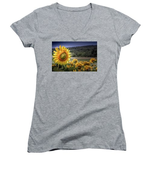 Field Of Sunflowers Women's V-Neck (Athletic Fit)