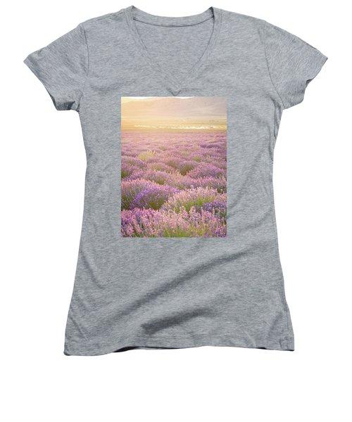 Fields Of Lavender Women's V-Neck