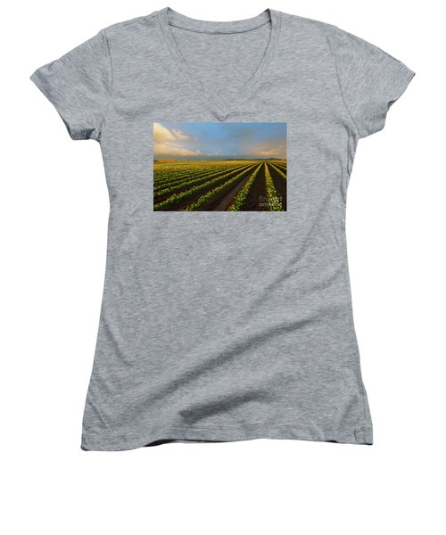 Women's V-Neck T-Shirt (Junior Cut) featuring the photograph Fields Of Yellow by Mike Dawson