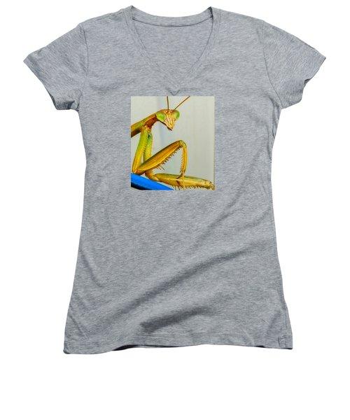Fierce Lady Women's V-Neck T-Shirt (Junior Cut) by Bruce Carpenter