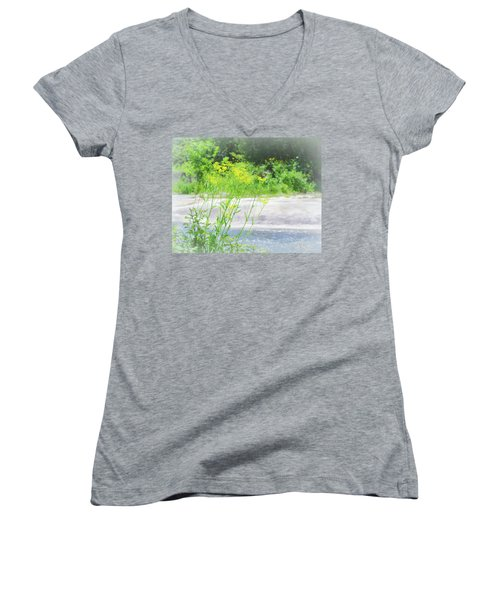 Fine Creek No. 2 Women's V-Neck T-Shirt