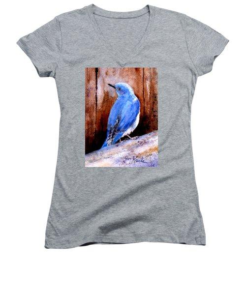 Firehole Bridge Bluebird - Male Women's V-Neck