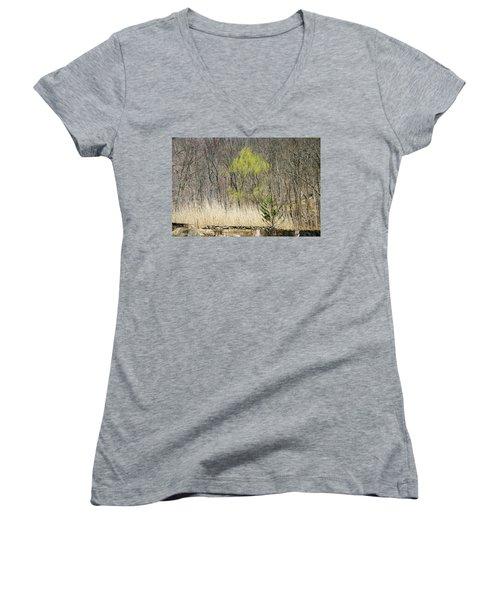 First Color - Women's V-Neck T-Shirt
