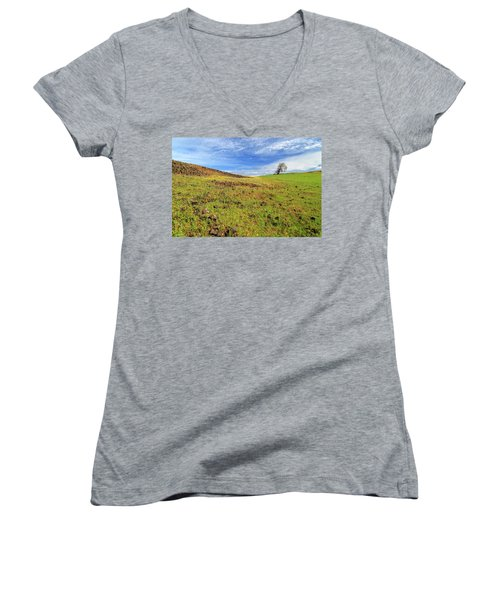 First Flowers On North Table Mountain Women's V-Neck T-Shirt (Junior Cut) by James Eddy