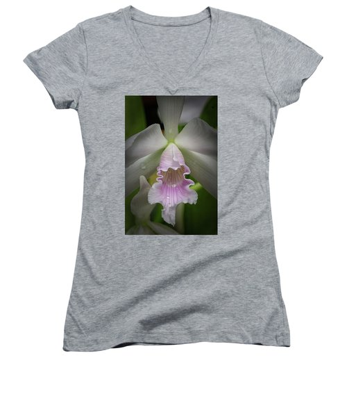First Orchid Straight On Women's V-Neck (Athletic Fit)