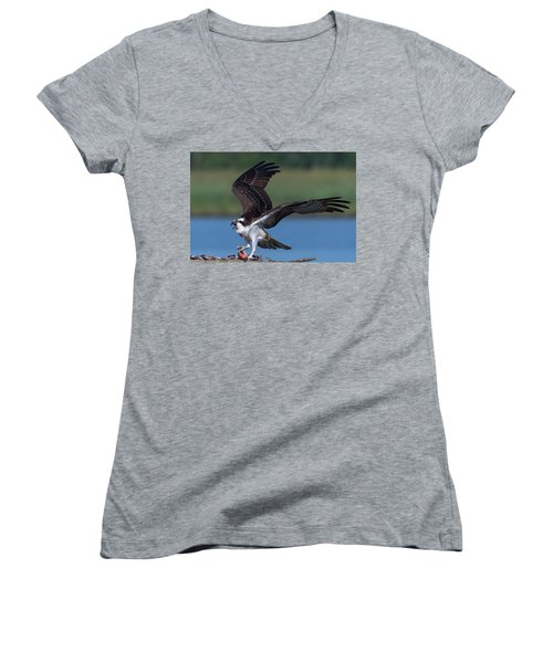 Fish For The Osprey Women's V-Neck