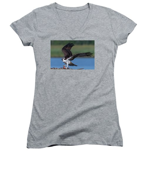 Fish For The Osprey Women's V-Neck (Athletic Fit)