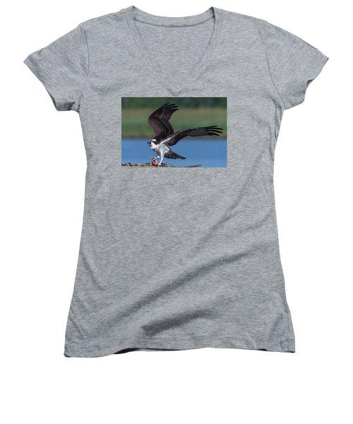 Fish For The Osprey Women's V-Neck T-Shirt