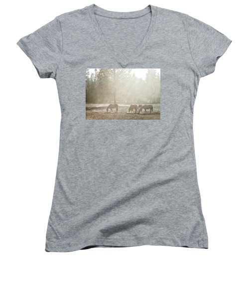 Five Horses In The Mist Women's V-Neck (Athletic Fit)