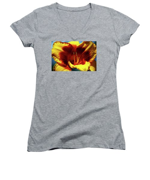 Flame Daylily 1238 H_2 Women's V-Neck T-Shirt