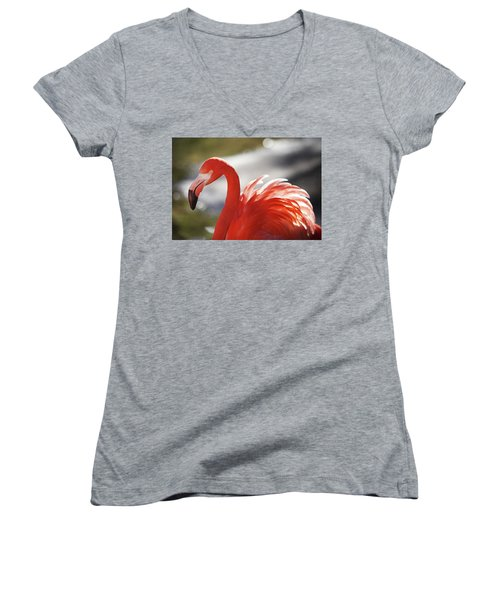 Women's V-Neck T-Shirt (Junior Cut) featuring the photograph Flamingo 2 by Marie Leslie