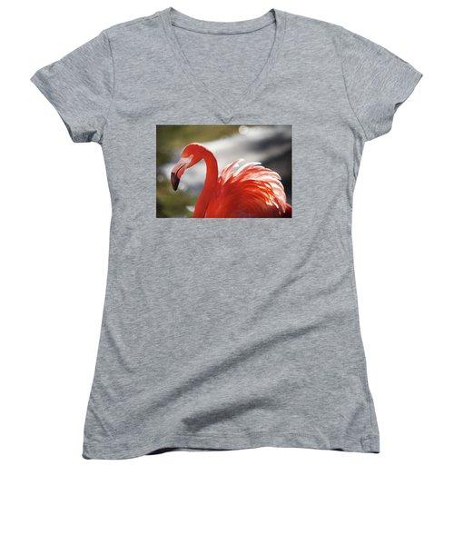 Flamingo 2 Women's V-Neck