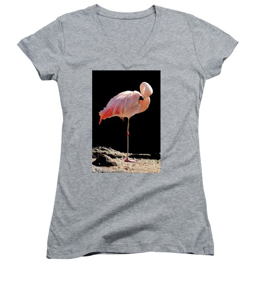 Flamingo Women's V-Neck