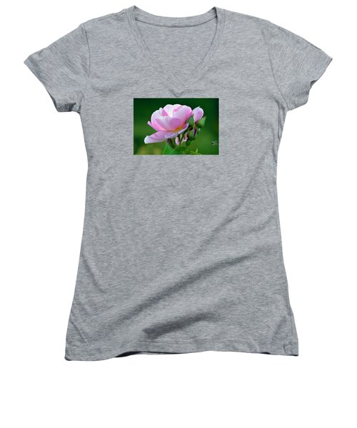Flight Of The Pollinator. Women's V-Neck (Athletic Fit)