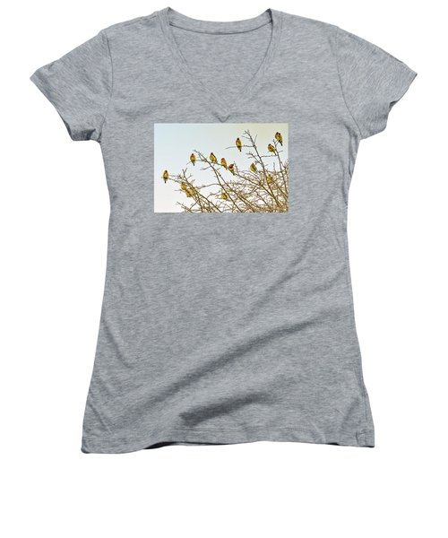Flock Of Cedar Waxwings  Women's V-Neck T-Shirt (Junior Cut) by Geraldine Scull