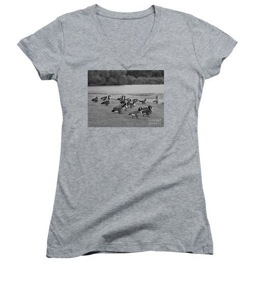 Flock Of Geese Women's V-Neck (Athletic Fit)