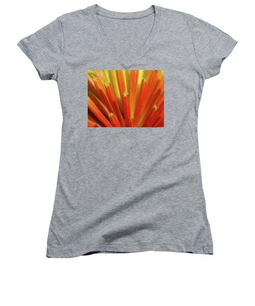 Floral Fireworks Women's V-Neck T-Shirt