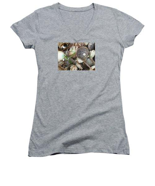 Florida Gulf Coast Scollops Women's V-Neck T-Shirt
