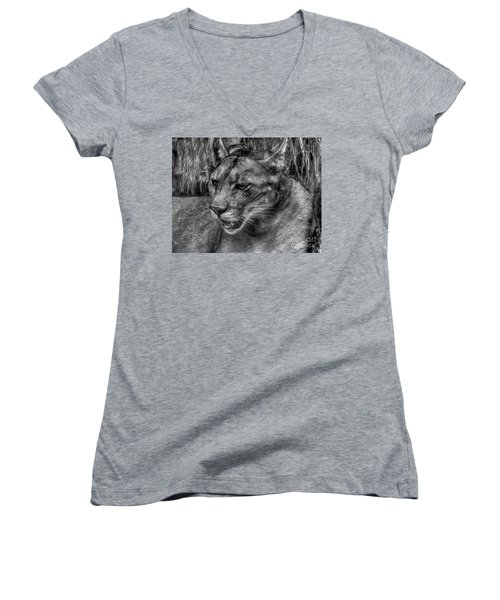 Women's V-Neck T-Shirt (Junior Cut) featuring the photograph Florida Panther by Myrna Bradshaw