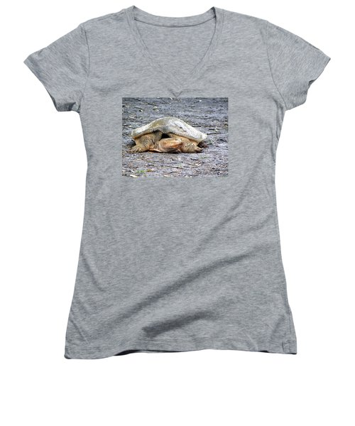 Women's V-Neck T-Shirt (Junior Cut) featuring the photograph Florida Softshell Turtle 001 by Chris Mercer
