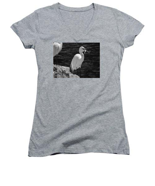 Florida White Egret Women's V-Neck T-Shirt (Junior Cut) by Jason Moynihan