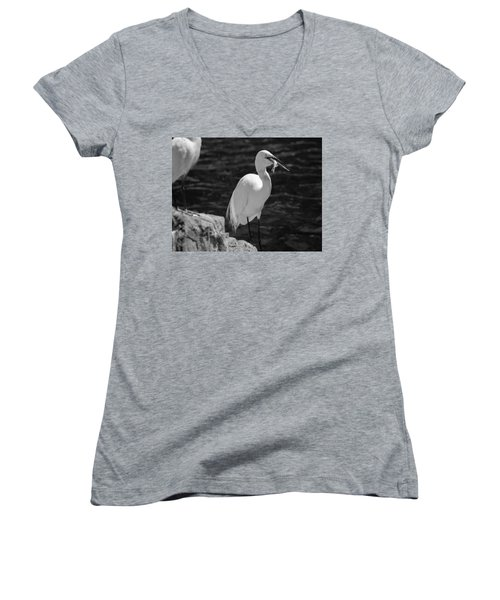 Florida White Egret Women's V-Neck T-Shirt