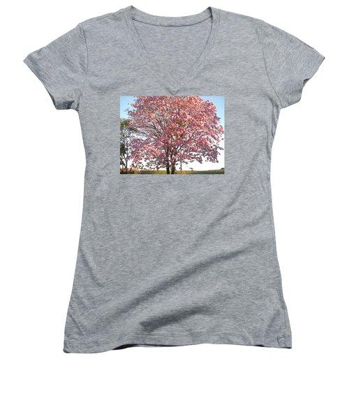 Flourish Women's V-Neck T-Shirt (Junior Cut) by Beto Machado