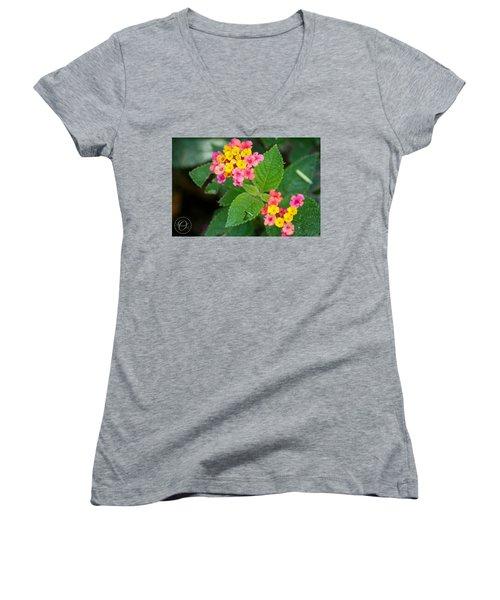 Flower Bloom Women's V-Neck T-Shirt (Junior Cut) by Shelley Overton