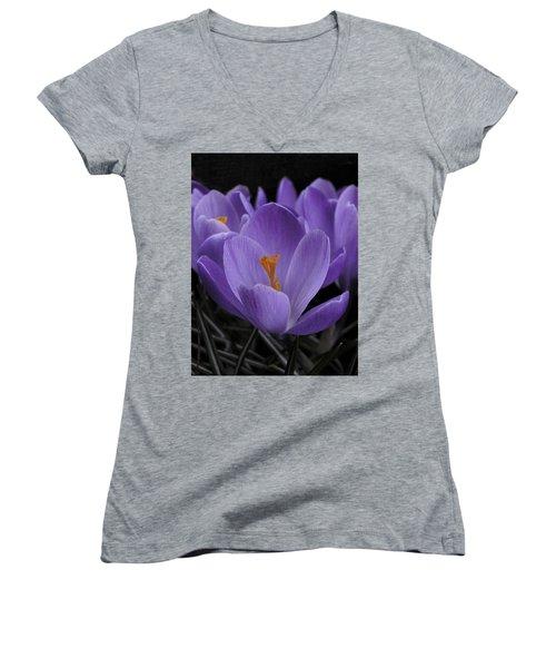 Flower Crocus Women's V-Neck T-Shirt (Junior Cut) by Nancy Griswold