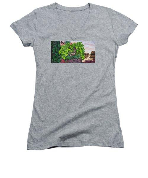 Flower Garden Viii Women's V-Neck T-Shirt