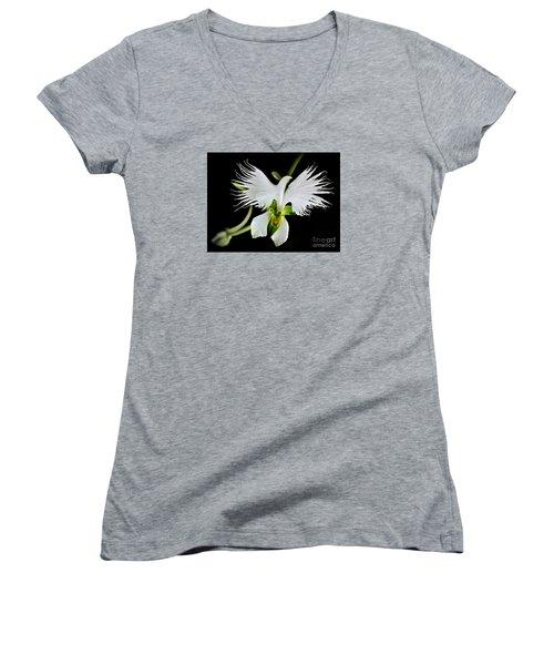 Flower Oddities - Flying White Bird Flower Women's V-Neck T-Shirt (Junior Cut) by Merton Allen