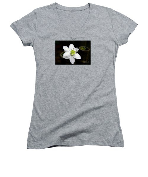 Women's V-Neck T-Shirt (Junior Cut) featuring the photograph Flower On Bamboo by Lisa L Silva