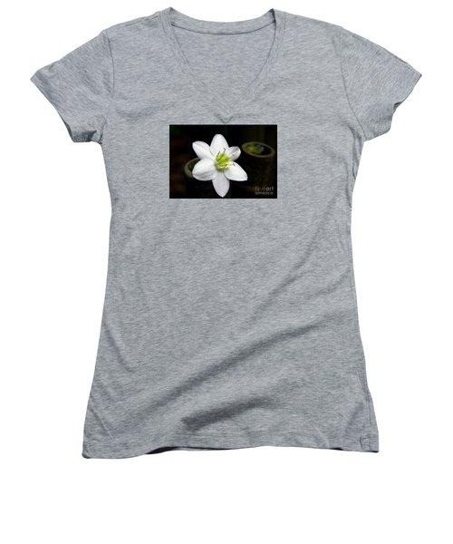 Flower On Bamboo Women's V-Neck T-Shirt
