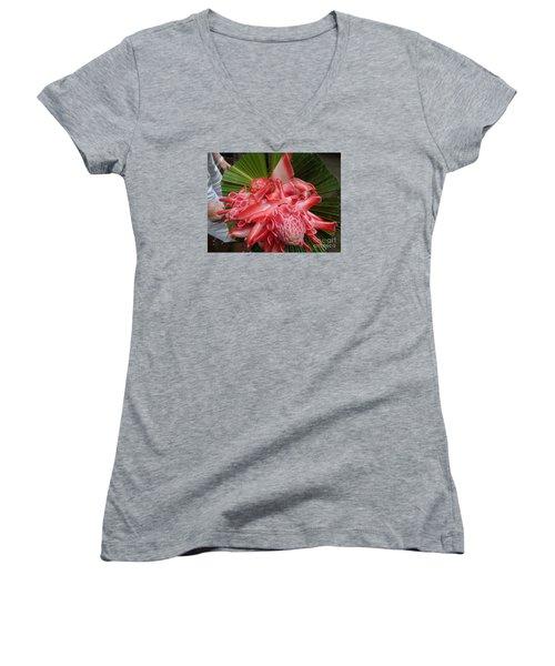 Flowering Coconiut Sao Tome Women's V-Neck T-Shirt (Junior Cut) by John Potts