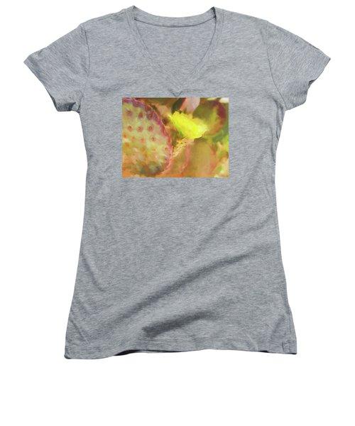 Flowering Pear Women's V-Neck