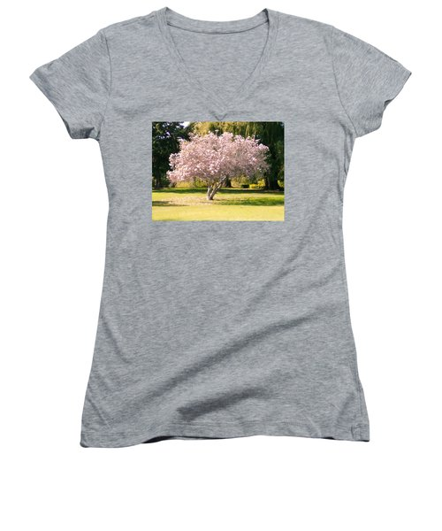 Flowering Tree Women's V-Neck T-Shirt